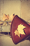 Autumn comes bike Royalty Free Stock Image