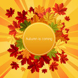 Autumn is coming Royalty Free Stock Photography
