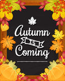 Autumn is coming Stock Image