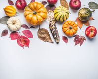 Autumn composing with pumpkin,corn , apples and leaves on light background, top view. Fall border Royalty Free Stock Photography