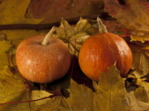 Autumn composition. With pumpkin, yellow leaves and fruits Royalty Free Stock Images
