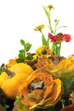 Autumn composition. Autumn floral composition with flowers and pumpkin Stock Image