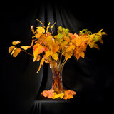 Autumn composition. Out of red and yellow birch leaves and branches Stock Image