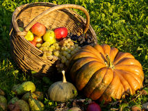 Autumn composition. A composition of autumnal fruits and vegetable Royalty Free Stock Photo