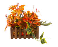 Autumn composition from artificial leaves in wooden box isolated Royalty Free Stock Photos