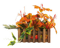 Autumn composition from artificial leaves in wooden box isolated Stock Photo