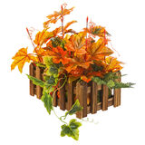 Autumn composition from artificial leaves in wooden box isolated Stock Photography