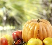Autumn Composition av grönsaker och frukter, pumpa, äpplen, päron på en vit bakgrund Royaltyfria Foton
