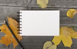 Autumn composition with blank notebook and fallen leaves. Autumn composition walk in the park with blank notebook and fallen leaves Royalty Free Stock Photography