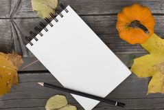 Autumn composition with blank notebook fallen leaves and pumpkin. Autumn composition walk in the park with blank notebook fallen leaves and pumpkin Royalty Free Stock Images