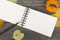 Autumn composition with blank open notebook. Fallen leaves and pumpkin Royalty Free Stock Image