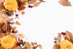 Free Autumn Composition. Blanket, Autumn Leaves And Pumkin On White Background. Flat Lay, Top View Copy Space Royalty Free Stock Image - 156007376