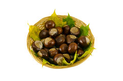 Autumn chestnut wicker basket on white background Stock Photography