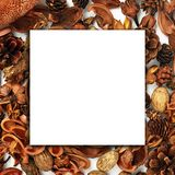 Autumn composition, collage, white paper, wood, dried flowers and buds on a white background. Autumn concept, copy space. Flat stock images