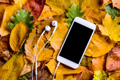 Autumn composition. Colorful leaves, smart phone, earphones. Stu Royalty Free Stock Photography