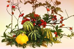 Autumn composition. The composition consists of a pair of pumpkins, viburnum, branches and wild rose. Autumn leaves stock image