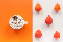 Autumn composition. Cup of cocoa with marshmallows and autumn dried red flowers of Physalis with copy space for text on orange and. Beige background. Top view royalty free stock photo
