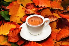 Free Autumn Composition. Cup Of Coffee On Colorful Autumn Leaves. Creative Autumn Thanksgiving, Fall, Halloween Concept Stock Images - 160966514