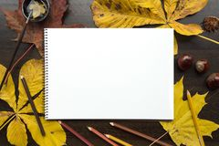 Autumn composition with empty album and fallen leaves. Autumn composition on dark surface with blank sketchbook and fallen leaves Royalty Free Stock Photos