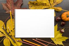 Autumn composition with empty album and fallen leaves. Autumn composition on dark surface with blank sketchbook and fallen leaves Stock Photography