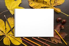 Autumn composition with empty album and fallen leaves. Autumn composition on dark surface with blank sketchbook and fallen leaves Stock Image
