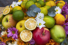 Autumn composition decorating counter. Apples, quinces and lemons, together with eucalyptus and daisies on the table Stock Image