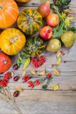 Autumn composition with different pumpkins, autumn leaves, chestnuts, rowan berries, apples and pears and wild rose berries. Royalty Free Stock Photos