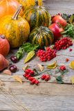 Autumn composition with different pumpkins, autumn leaves, chestnuts, rowan berries, apples and pears and wild rose berries. Stock Image