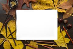 Autumn composition with empty album and fallen leaves. Autumn composition on dark surface with blank sketchbook and fallen leaves Royalty Free Stock Photo