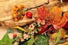Autumn composition of fallen leafs, ivy, hawthorn, rowan etc. Royalty Free Stock Image