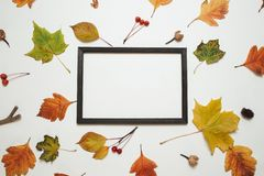 Autumn composition, Flat lay. Wooden photo frame with fresh autumn leaves on white background with copy space Top view stock photo