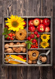 Autumn composition with flowers sunflowers, red apples, nuts in vintage wooden box. Stock Photo