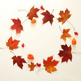 Autumn composition. Frame of autumn leaves, acorn, pine cones on white background Royalty Free Stock Image