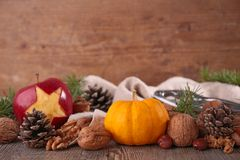 Autumn composition Royalty Free Stock Photos