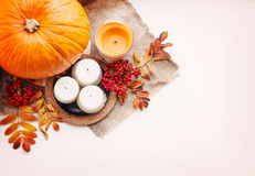 Autumn composition of fruits and vegetables on a white backgroun Royalty Free Stock Photography