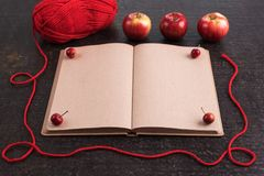 Autumn composition with an old empty book Royalty Free Stock Photography