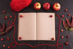 Autumn composition with an old empty book Royalty Free Stock Photo