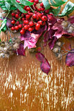 Autumn composition of leaves, flowers, berries on wooden background. Royalty Free Stock Images