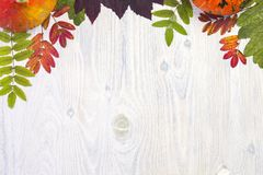 Autumn composition leaves and pumpkin on white wooden background Royalty Free Stock Photography