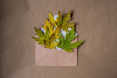 Autumn composition with a letter and yellow maple leaves Stock Photo