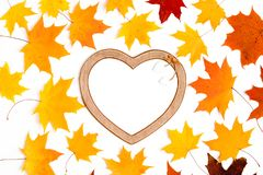 Autumn composition, maple leaves, heart shaped frame, top view, flat lay. Autumn, fall, halloween concept. Autumn composition, maple leaves, heart shaped frame royalty free stock images