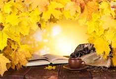 Autumn composition. Maple leaves, hot tea and open book royalty free stock photography