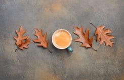 Autumn Composition med koppen kaffe och Autumn Leaves på sten- eller betongbakgrund Royaltyfri Foto