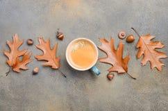 Autumn Composition med koppen kaffe och Autumn Leaves på sten- eller betongbakgrund Fotografering för Bildbyråer