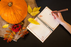 Autumn composition of notebook woman's hand with a pen among row Royalty Free Stock Images