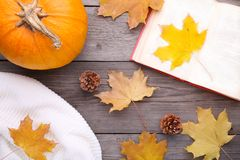 Autumn composition with old book, pumpkin, sweater and leaves on a grey table stock image