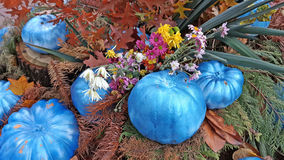 Autumn composition of painted pumpkins, flowers and leaves. Bright autumn composition of painted pumpkins, flowers and leaves, the harvest festival in the city Stock Photo