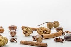 Pine cones, cinnamon and acorns on a white background stock photography