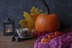 Autumn composition royalty free stock photo