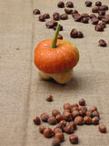 Autumn composition with pumpkin, hazelnuts and chestnuts on jute fabric background Stock Photos